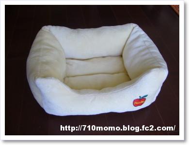 モモのベッド