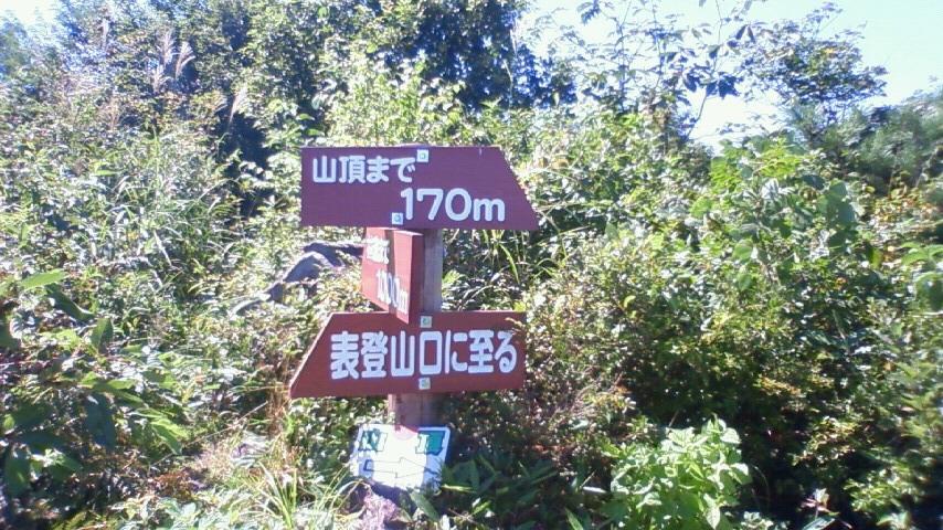 blog464.jpg
