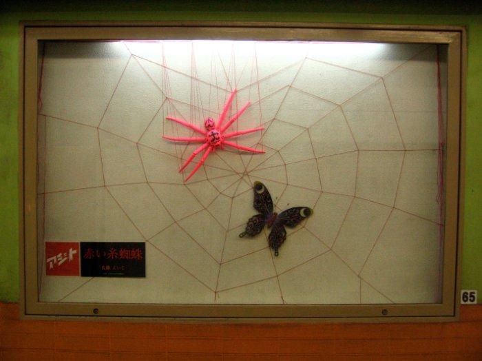 蜘蛛-01
