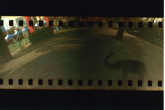 カメラ2010-03