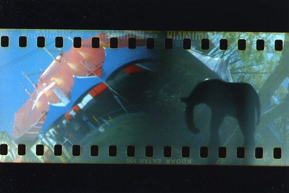 カメラ2010-02