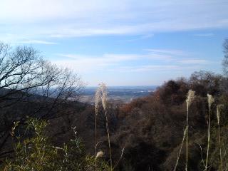 不動峠からの富士山