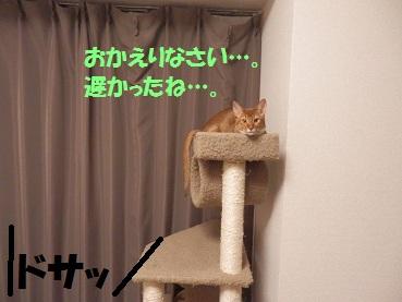 P2073932.jpg
