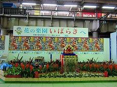 IMG_1975-fukuroda.jpg