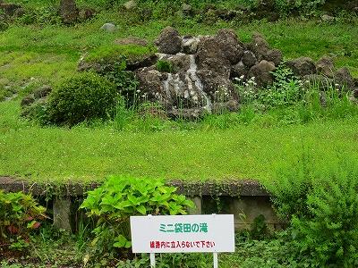 IMG_2649-fukurada.jpg