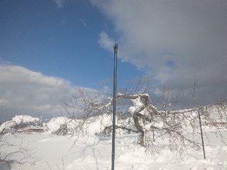 雪の深さ前