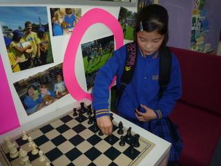 サリ チェス