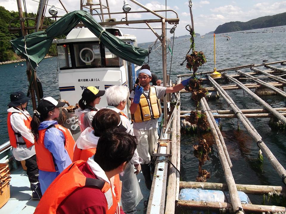 唐桑海の体験センター 牡蠣養殖