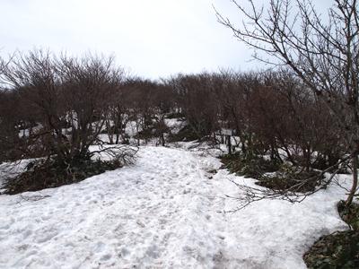 那岐山雪の道