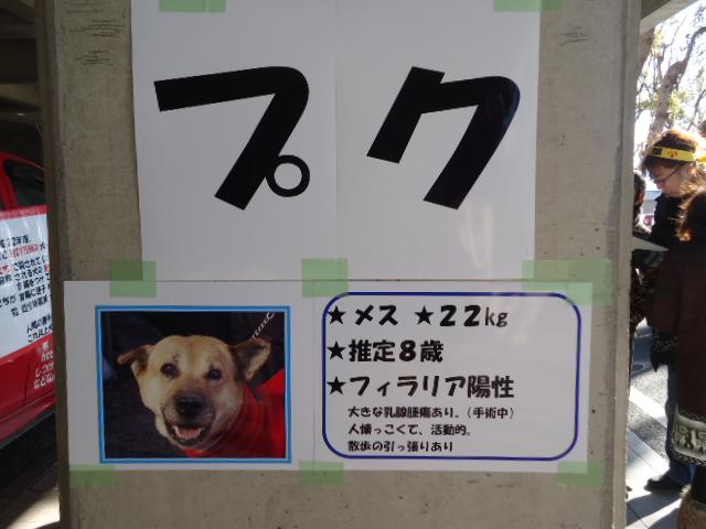 001_20130127210603.jpg