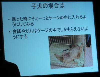 犬のしつけ講座011