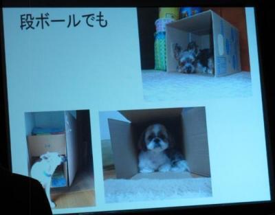 犬のしつけ講座012
