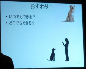 犬のしつけ講座023