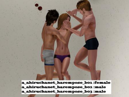 harem (12)