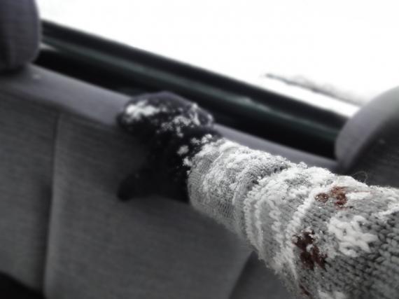 車内に雪_convert_20110212200902