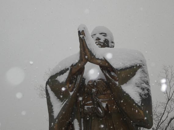 雪に像3_convert_20110212201234