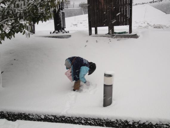 地味に雪だるま作り_convert_20110212201519