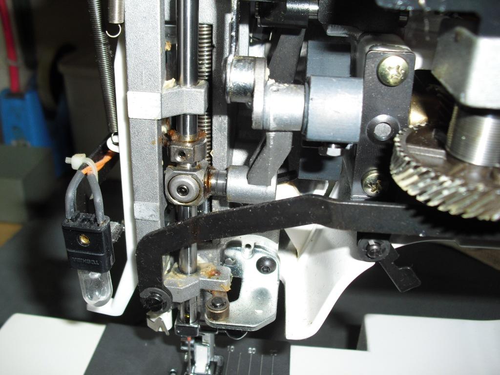 Apricot9700-3_20111011013151.jpg