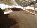 H25.12.21牛糞堆肥置き場の様子@IMG_0362