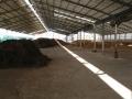 H25.12.25牛糞堆肥置場の様子@IMG_0422