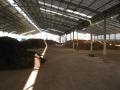 H26.1.7堆肥置き場③@IMG_0506