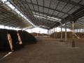 H26.1.13堆肥置き場の様子@IMG_0541