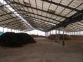 H26.1.15堆肥置場の様子⑤@IMG_0554