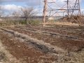 H26.1.22堆肥撒布(2000k)@IMG_0587