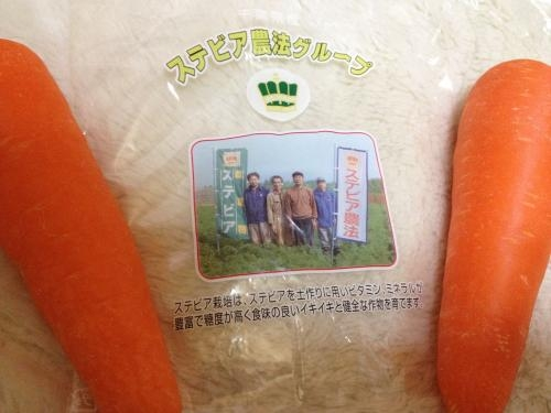 ステビア農法 ニンジン2