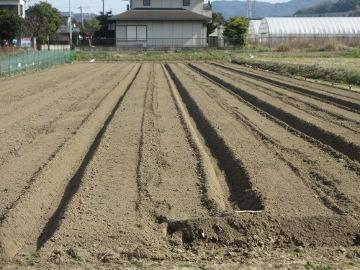 農園準備25年度20