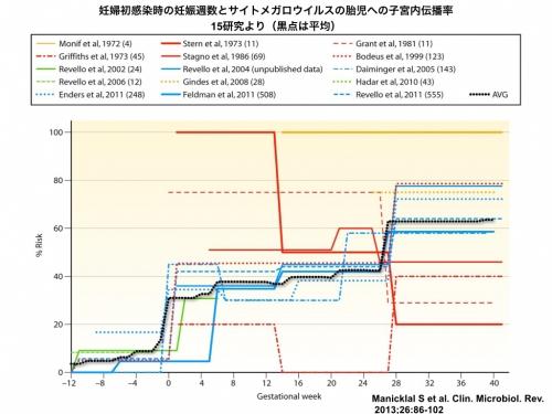 妊婦初感染時のCMV伝播率
