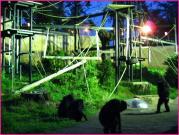 新しいチンパンジー舎