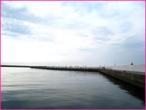 大津漁港は釣り人でいっぱい