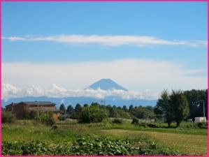 富士山も顔を出す