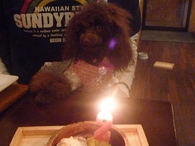 BirthdayGirl/ALOHA-chan