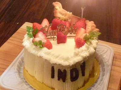 Birthday cake for Indy