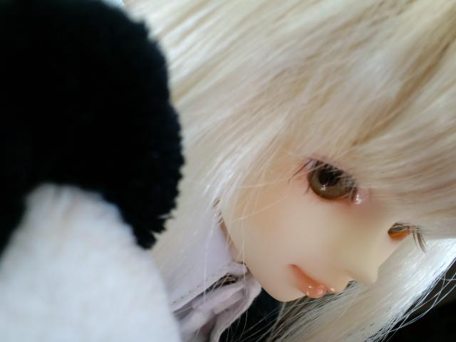 moblog_d53339b4.jpg
