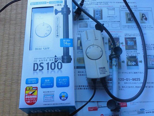NEC_1082.jpg
