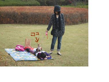 snap_akiyu2_2010114111359.jpg