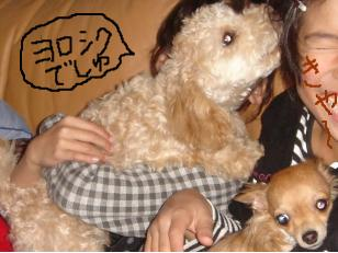snap_akiyu2_2010114122420.jpg
