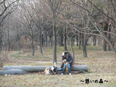 憩いの森①