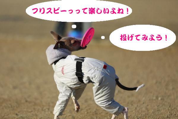 IMG_8809−1_convert_20140123194856