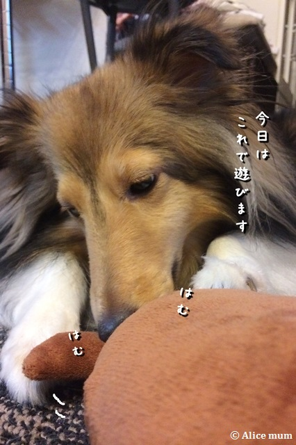 2m_201410250048318f8.jpg