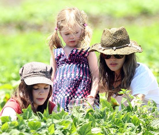 レイチェル・ビルソン 青空の下で野菜の収穫♪