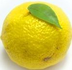 柚子味噌大根 柚子