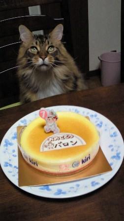 バロンの誕生日