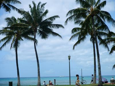 ハワイ旅行「ESTA」について