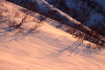 朝日射す雪原