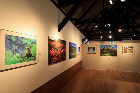 第二展示室・Ⅱ