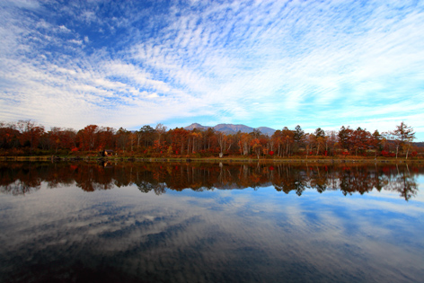 八ヶ岳ふるさと公園の池